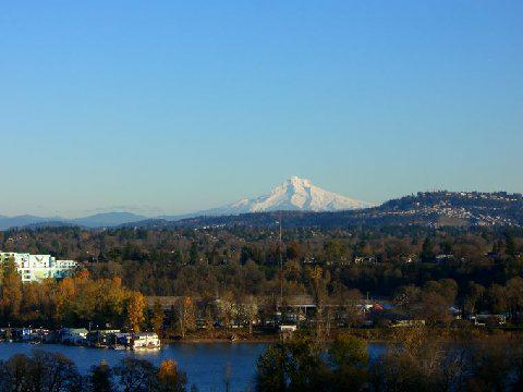 portland oregon views from a staged home